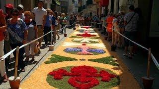 Ковры из цветов в Сиджесе
