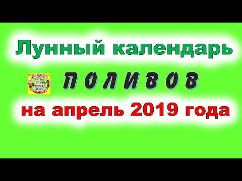 Лунный календарь поливов на апрель 2019 года