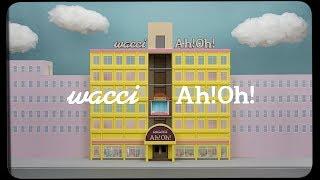 wacci 『Ah!Oh!』MVフル