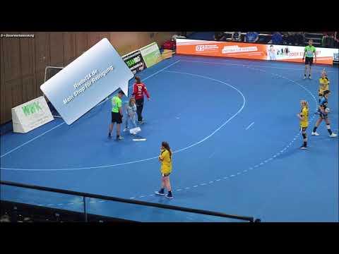 06.01.2018 | HC Rödertal vs. SG BBM Bietigheim | Handball 1. Bundesliga Frauen |