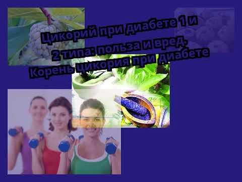 Цикорий при диабете 1 и 2 типа: польза и вред. Корень цикория при ...