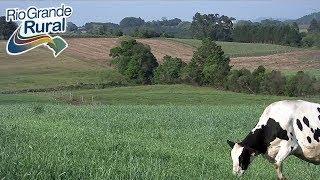 Download Mp3 Gestão Leite Em Fagundes Varela-rs - Rio Grande Rural