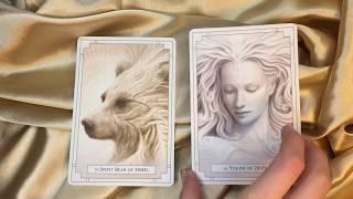 TRUE LOVE CARD READING - Divine Masculine and Feminine planning the future