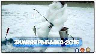 Наша Рыбалка 2016 на Волге