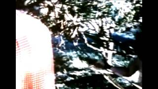 Telepathine - The Art Of Drawing Spirits Into Crystals