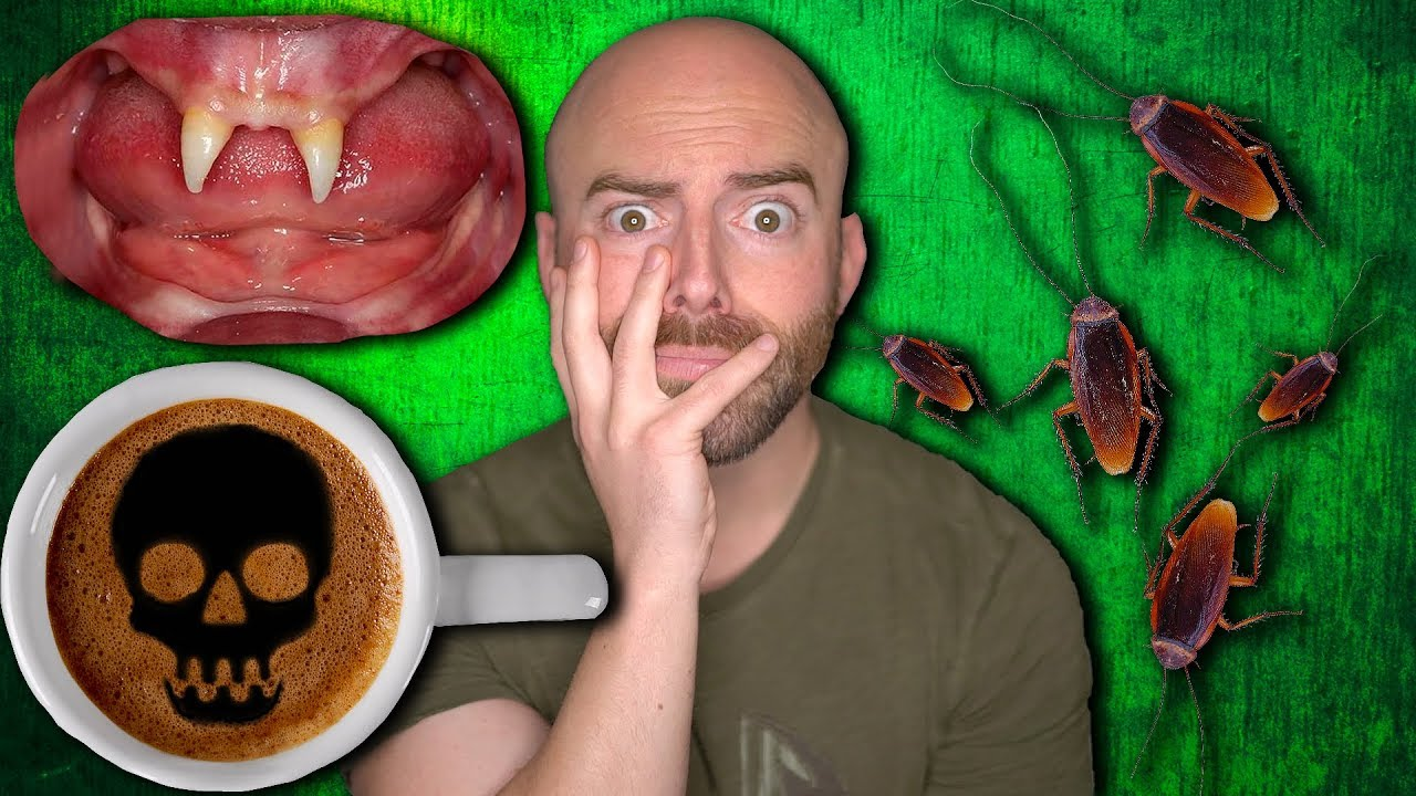 Disturbing Facts You DIDN'T Want to Know! - Part 2