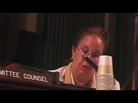 NYC Council Net Neutrality Hearing - Panel 2