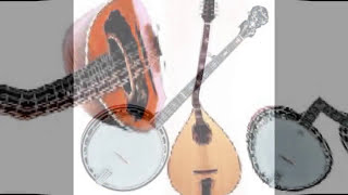 Syntheway Banjodoline Virtual Banjo & Mandolin VSTi (Octave Mandolin, Banjolin, Electric Mandolin)