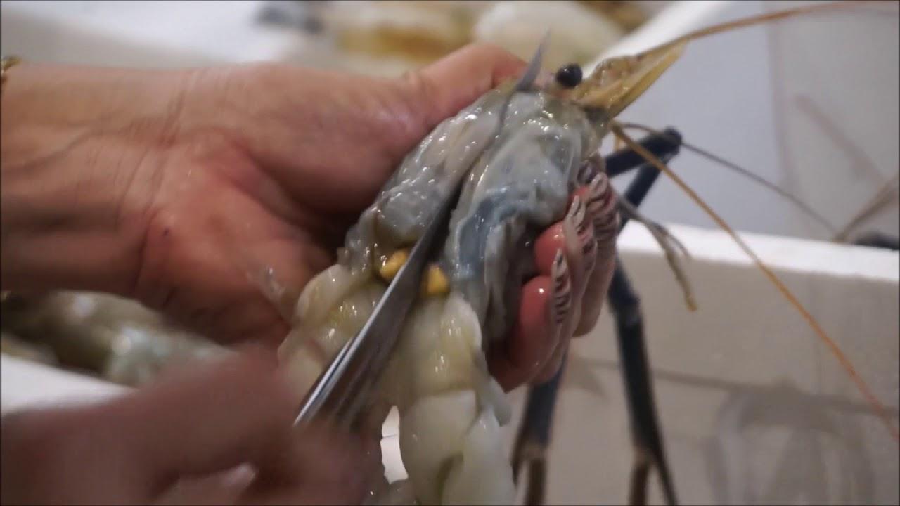 ต้ำยำกุ้งแม่น้ำ กุ้งก้ามกรามตัวใหญ่สุดแซบ สมาคมผู้ประกอบการอาหาร River prawn SpicySoup TomYum Kung