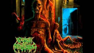 Watch Cease Of Breeding Death To All And All To Death video