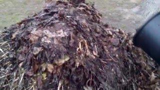 Фото Ускоряем процесс компостирования