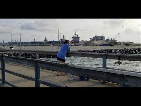 Crabbing And Fishing Naval Station Norfolk Fishing Pier   2018 07 12