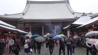 2019年2月9日に撮影。朝方の天気予報で東京23区で5センチの積雪が見込ま...