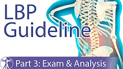 Low Back Pain Guideline: Examination & Analysis (Part 3)