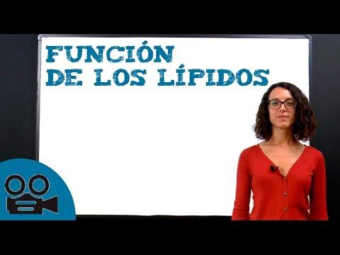 1. Presentación del trabajo de ingreso María del Mar Sáez de Ocáriz Gutiérrez from YouTube · Duration:  11 minutes 17 seconds