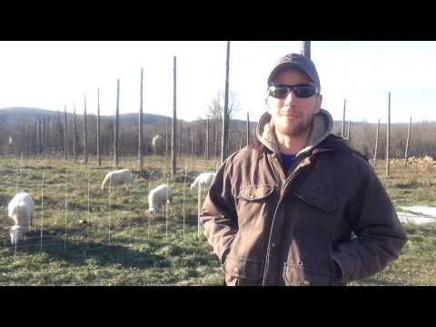 Farm business planning: Finding a model that works