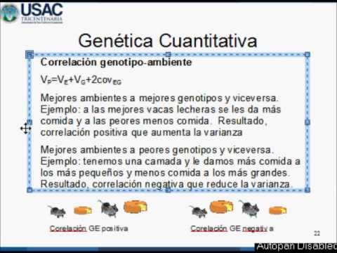 Correlación genotipo ambiente