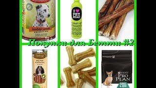 Покупки для собаки/ вкусняшки для Бетти🎀 Stasy Smile