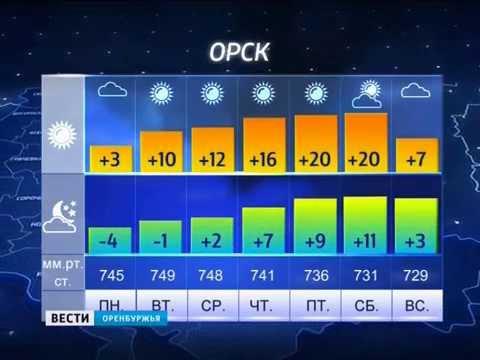 Какая погода ожидает нас в ближайшие дни? Прогноз на неделю