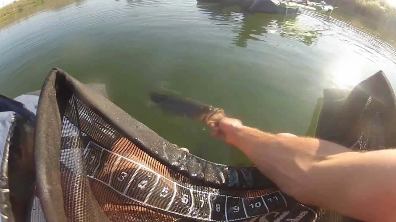 Bass fishing on belly boat 2013 fish cat 4 youtube for Belly boat fishing