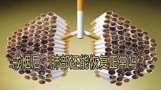 【健康常识】戒烟后,肺部还能恢复正常吗?