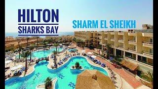 ЕГИПЕТ 2020 HILTON SHARKS BAY 4