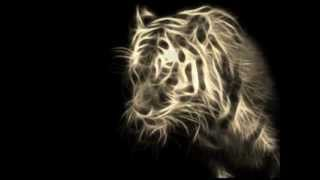 los tigres del norte mix 2012 DJ LOPEZ.cajola.
