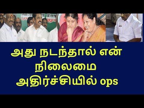 ops eps call for unity among cadres|tamilnadu political news|live news tamil