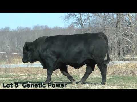 Lot 5 D3 J&K Genetic Power