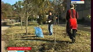 Будущее озеленение и благоустройство Сочи(, 2011-11-25T13:31:14.000Z)