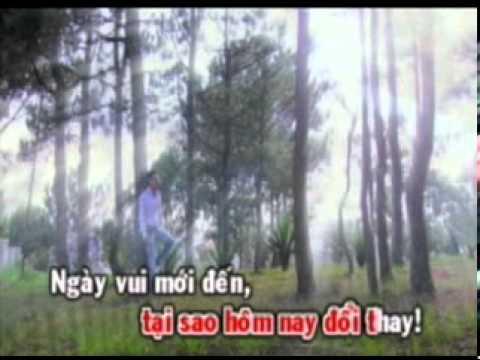 Duy Manh - Con Mai Dam Me
