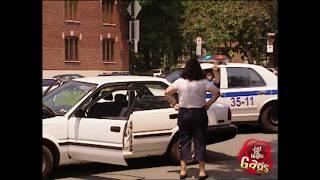 Mejores Bromas de Policías Vol. 2  Lo Mejor de Just For Laughs Gags