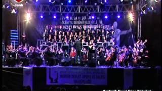 GÖNÜL DAĞI -Neşet ERTAŞ Türküleri -Senfonik