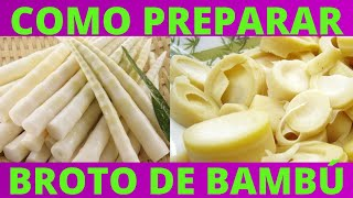 Colhendo e Preparando Brotos de Bambu – Ficou uma Delícia!