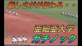 野球 地獄 部 大学 亜細亜