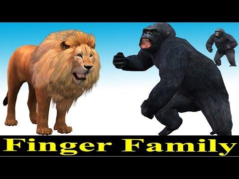Animals Finger Family Rhymes for Kids