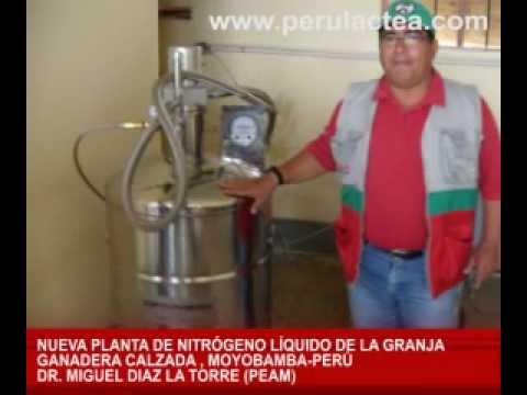 Planta de nitr geno l quido granja calzada moyobamba for Nitrogeno liquido para cocinar