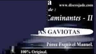 Las Gaviotas-Los Caminantes Karaoke