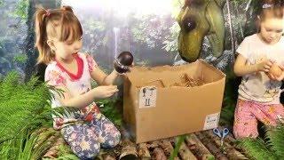 Рита и Маша видео с ДИНОЗАВРАМИ . Видео для детей | КидсфоКидс Kids for Kids(Рита и Маша история про динозавров! Привет! Здесь мы покажем не много о жизни динозавров! Динозавры! Диноза..., 2016-02-02T15:32:55.000Z)