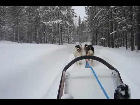 Ever wondered, what it takes to reach your office in Finland!! :D
