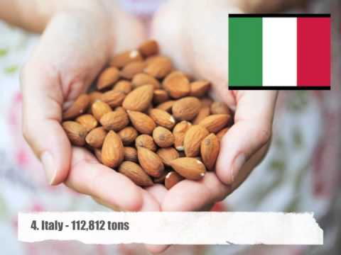 Top 10 Almond Producing Countries