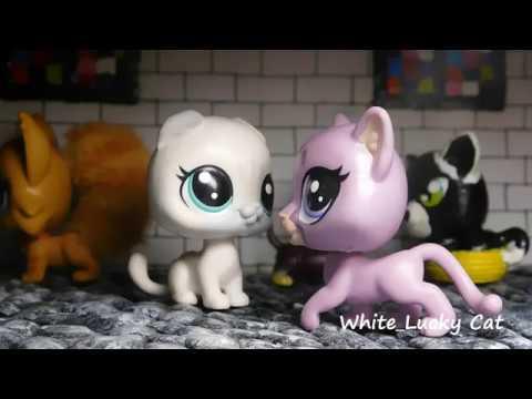 Видео: LPS: клип