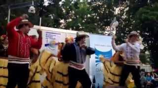 Carreta Guy. Grupo de danza folklórica Juky Paraguay