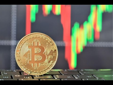 Bitcoin Hits New Yearly High Other Top Coins Shoot Upwards Too