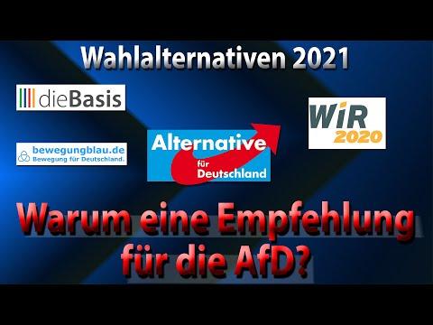 Warum dieser Kanal die AfD als erste Wahl empfiehlt