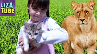 ВЛОГ Мой ВЫХОДНОЙ Много Животных Зоомагазин Лиза испугалась в Зоопарке Львица и львенок 🌸 LizaTube