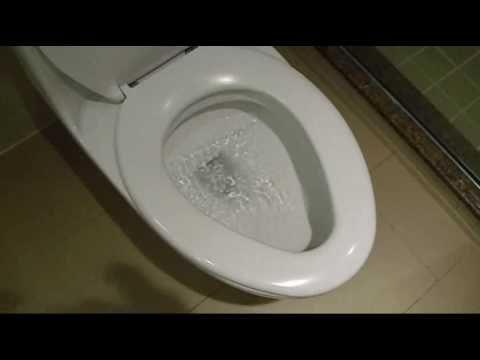 Duravit Us One Piece Toilet Flush