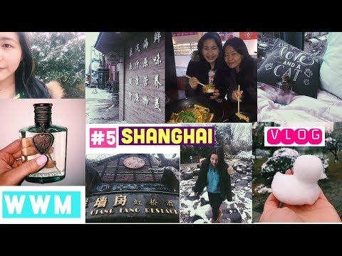 WWM #5- Shanghai, China~ Cheap Market, East Nanjing, Snow Vlog