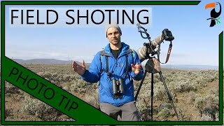 Photography Tip - How to Photograph Birds in the Field