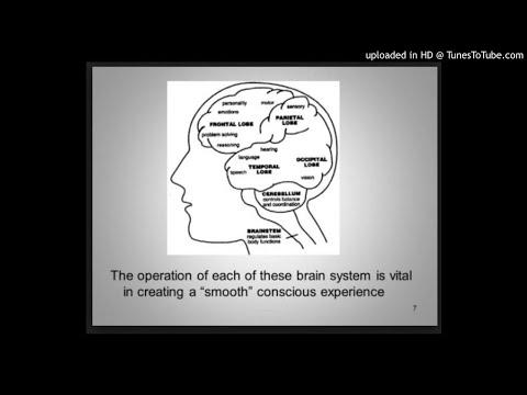 Investigating conscious experience